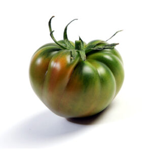tomate-raf-sucedaneo